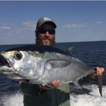 blackfin tuna